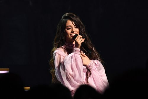 Camila Cabello Sang to a 'Man She Loves' at the Grammys & No, It's Not Shawn Mendes